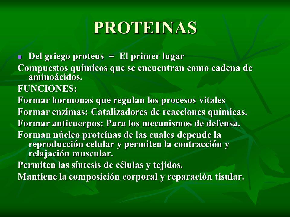 PROTEINAS Del griego proteus = El primer lugar Del griego proteus = El primer lugar Compuestos químicos que se encuentran como cadena de aminoácidos.