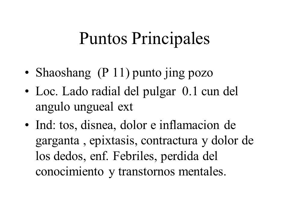 Puntos Principales Shaoshang (P 11) punto jing pozo Loc. Lado radial del pulgar 0.1 cun del angulo ungueal ext Ind: tos, disnea, dolor e inflamacion d