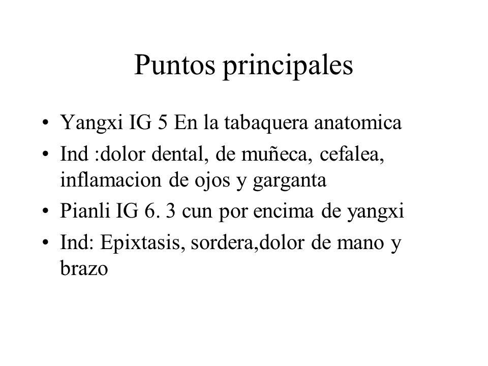 Puntos principales Yangxi IG 5 En la tabaquera anatomica Ind :dolor dental, de muñeca, cefalea, inflamacion de ojos y garganta Pianli IG 6. 3 cun por