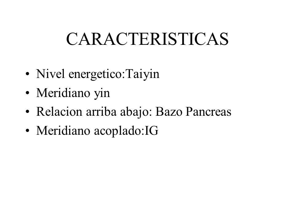 CARACTERISTICAS Nivel energetico:Taiyin Meridiano yin Relacion arriba abajo: Bazo Pancreas Meridiano acoplado:IG