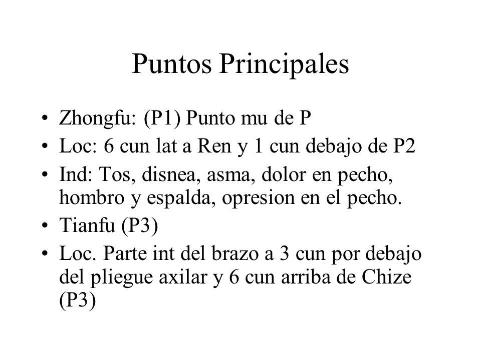 Puntos Principales Zhongfu: (P1) Punto mu de P Loc: 6 cun lat a Ren y 1 cun debajo de P2 Ind: Tos, disnea, asma, dolor en pecho, hombro y espalda, opr