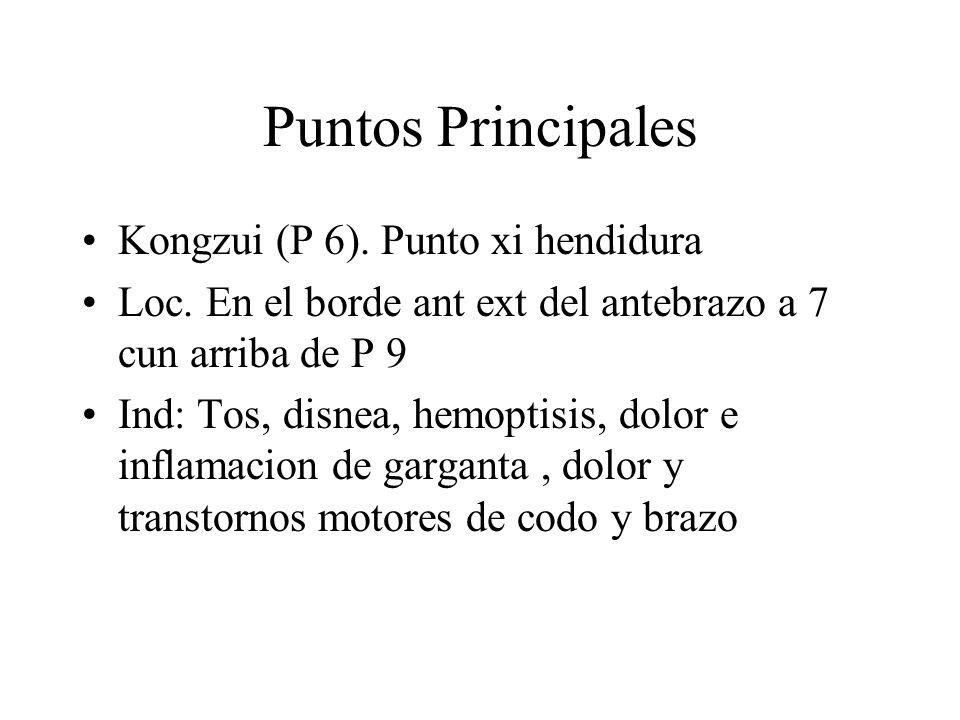 Puntos Principales Kongzui (P 6). Punto xi hendidura Loc. En el borde ant ext del antebrazo a 7 cun arriba de P 9 Ind: Tos, disnea, hemoptisis, dolor
