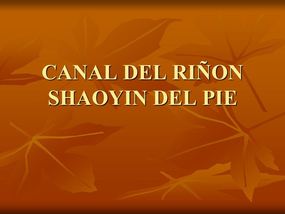 CANAL DEL RIÑON SHAOYIN DEL PIE