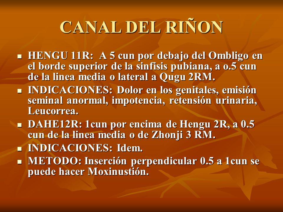 HENGU 11R: A 5 cun por debajo del Ombligo en el borde superior de la sinfisis pubiana, a o.5 cun de la linea media o lateral a Qugu 2RM. HENGU 11R: A