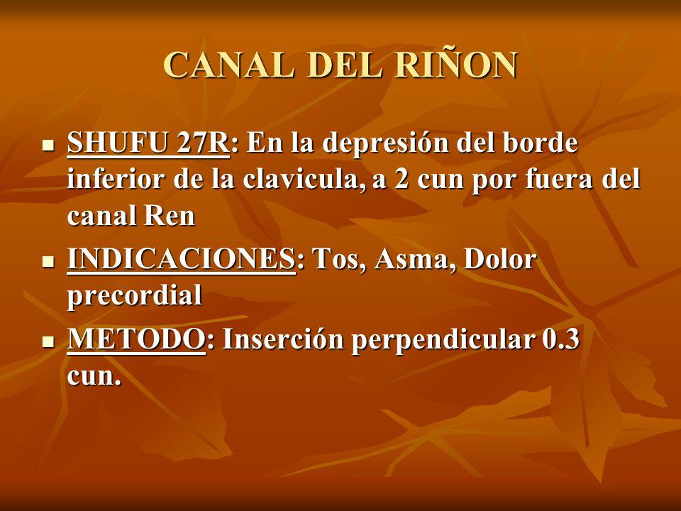 SHUFU 27R: En la depresión del borde inferior de la clavicula, a 2 cun por fuera del canal Ren SHUFU 27R: En la depresión del borde inferior de la cla