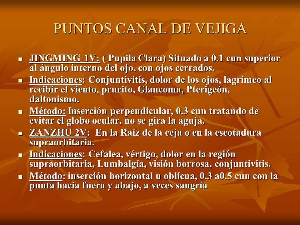 PUNTOS CANAL DE VEJIGA JINGMING 1V: ( Pupila Clara) Situado a 0.1 cun superior al ángulo interno del ojo, con ojos cerrados. JINGMING 1V: ( Pupila Cla