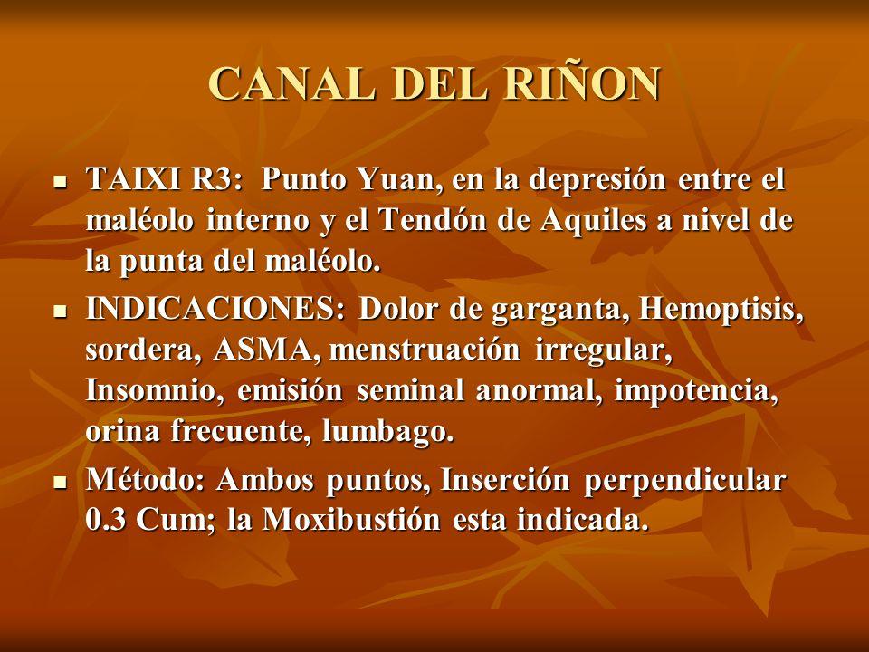 CANAL DEL RIÑON TAIXI R3: Punto Yuan, en la depresión entre el maléolo interno y el Tendón de Aquiles a nivel de la punta del maléolo. TAIXI R3: Punto