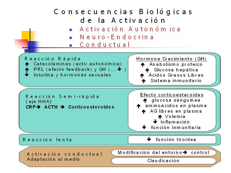 INTERACCIONES PNIE Comportamiento Estrés Emocional y Físico Factores Psicosociales S.N.C H. Endocrino H. Hipofisiarias Inmunotransmisores Neuropéptido