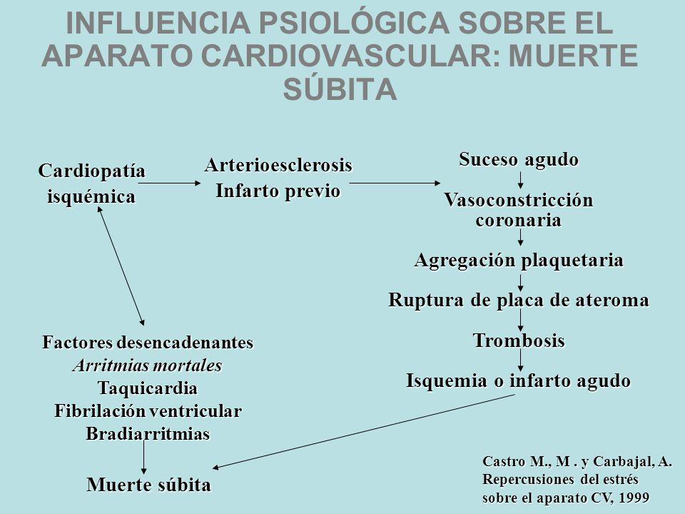 PCTA Y DESARROLLO DE LA ENFERMEDAD CORONARIA Estrés Conducta Tipo A ¿Factorconstitucional? Activaciónsimpáticayreactividadvascular FACTORES MEDIADORES