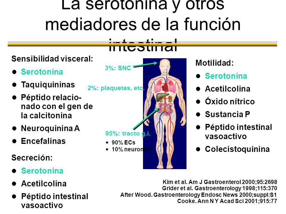 SII - FISIOPATOLOGIA Kim and Camilleri. Am J Gastroenterol 2000;95:2698 Percepciónaumentada Sensibilidadalterada Motilidadalterada Factorespsicosocial
