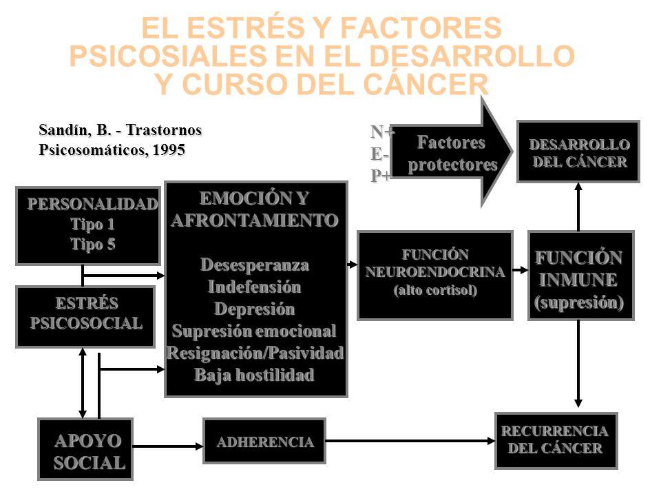 EFECTOS DIRECTOS E INDIRECTOS DE LOS FACTORES PSICOSOCIALES Y CONDUCTUALES SOBRE EL CÁNCER EfectosDirectosEfectosindirectos INICIO DEL CÁNCER PROGRESI