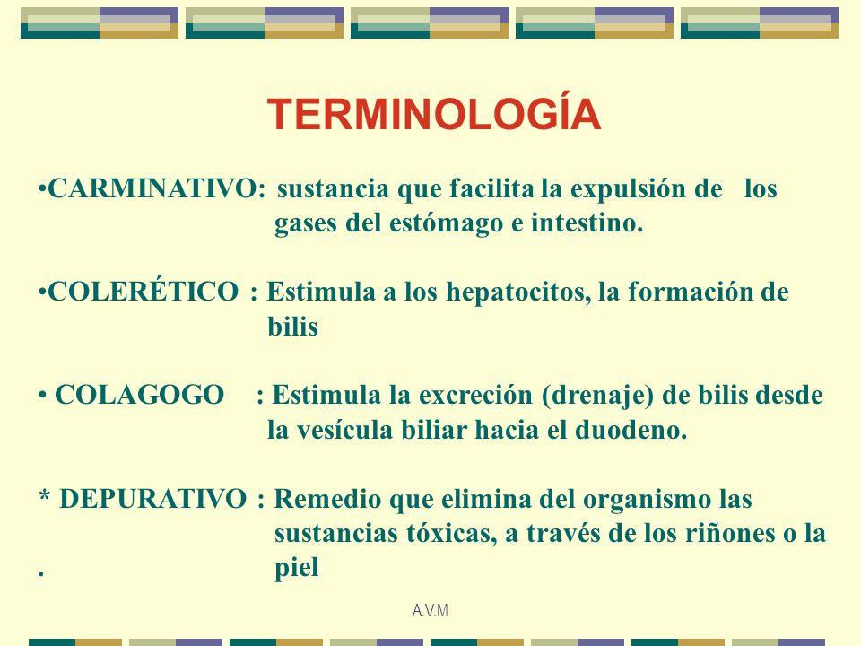 A.V.M TERMINOLOGÍA CARMINATIVO: sustancia que facilita la expulsión de los gases del estómago e intestino. COLERÉTICO : Estimula a los hepatocitos, la