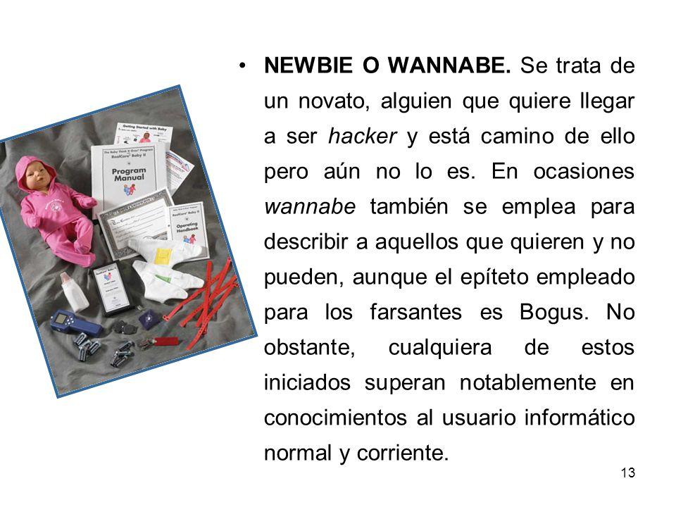 13 NEWBIE O WANNABE.