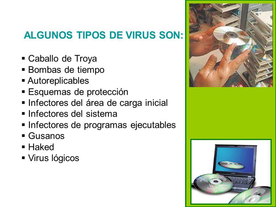18 ALGUNOS TIPOS DE VIRUS SON: Caballo de Troya Bombas de tiempo Autoreplicables Esquemas de protección Infectores del área de carga inicial Infectore
