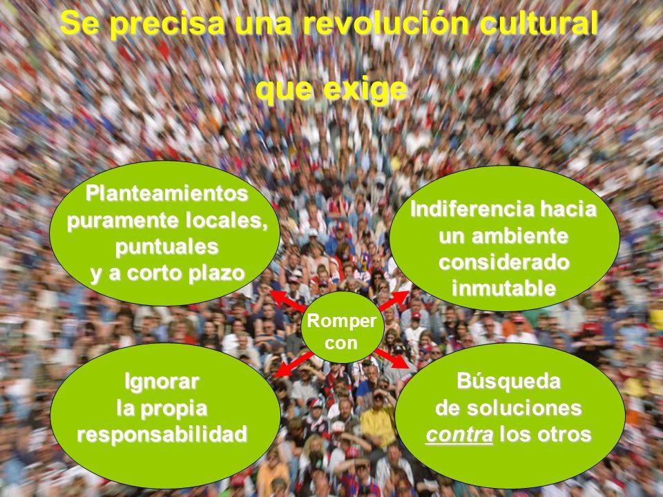 Se precisa una revolución cultural que exige Planteamientos puramente locales, puntuales y a corto plazo Indiferencia hacia un ambiente considerado in