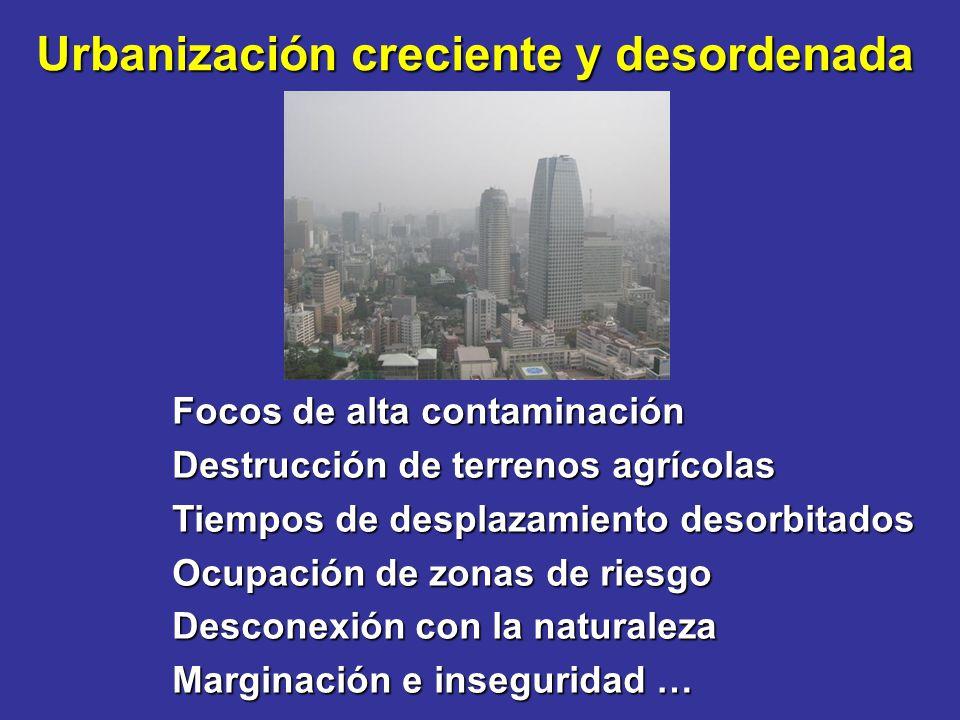 Focos de alta contaminación Destrucción de terrenos agrícolas Tiempos de desplazamiento desorbitados Ocupación de zonas de riesgo Desconexión con la n