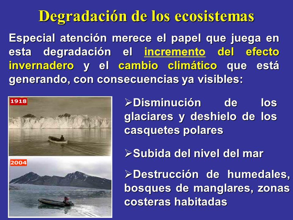 Degradación de los ecosistemas Especial atención merece el papel que juega en esta degradación el del efecto invernadero y el cambio climático que est