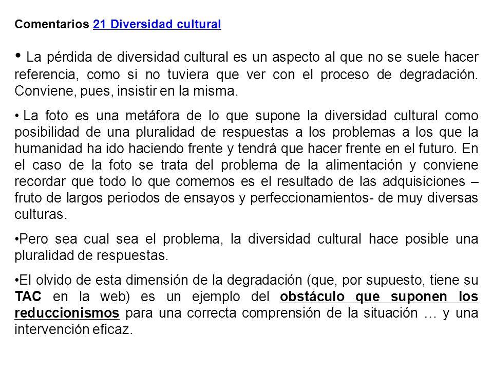 Comentarios 21 Diversidad cultural La pérdida de diversidad cultural es un aspecto al que no se suele hacer referencia, como si no tuviera que ver con