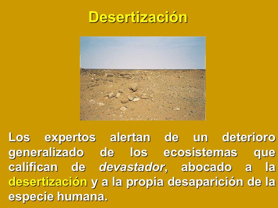 Desertización Los expertos alertan de un deterioro generalizado de los ecosistemas que califican de devastador, abocado a la desertización y a la propia desaparición de la especie humana.