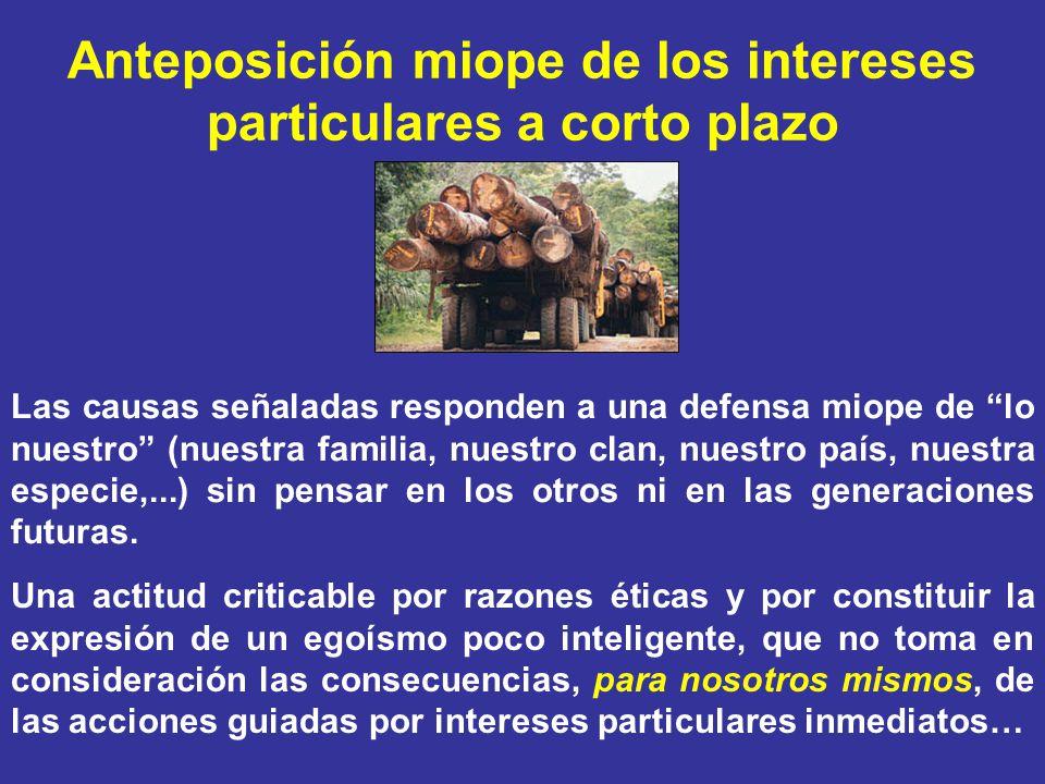 Anteposición miope de los intereses particulares a corto plazo Las causas señaladas responden a una defensa miope de lo nuestro (nuestra familia, nues