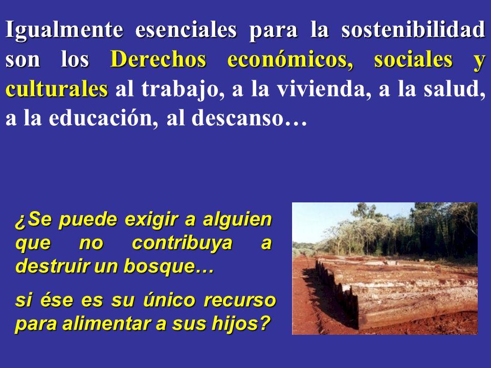 Igualmente esenciales para la sostenibilidad son los Derechos económicos, sociales y culturales Igualmente esenciales para la sostenibilidad son los D