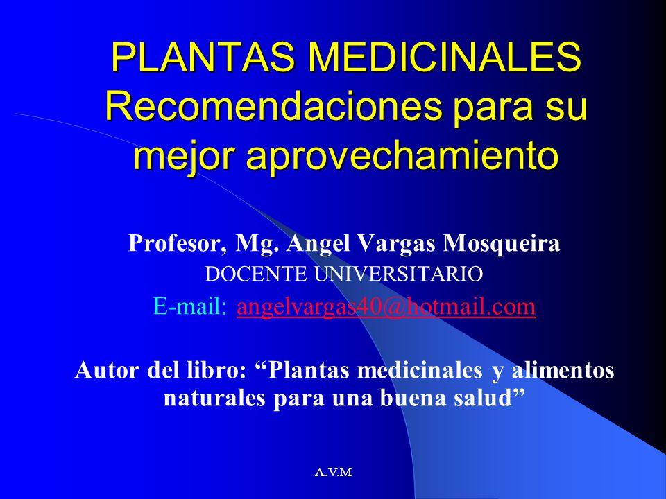 A.V.M PLANTAS MEDICINALES Recomendaciones para su mejor aprovechamiento Profesor, Mg. Angel Vargas Mosqueira DOCENTE UNIVERSITARIO E-mail: angelvargas