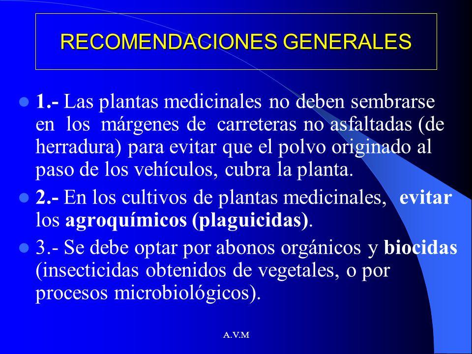 A.V.M RECOMENDACIONES GENERALES 1.- Las plantas medicinales no deben sembrarse en los márgenes de carreteras no asfaltadas (de herradura) para evitar