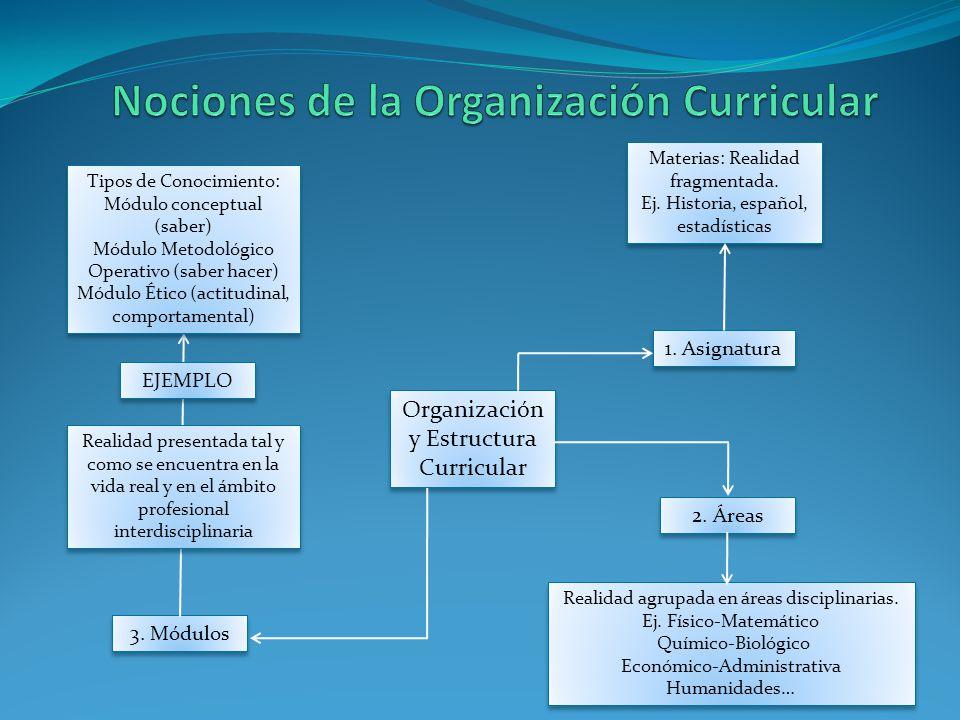 Organización y Estructura Curricular 1. Asignatura 2. Áreas 3. Módulos Tipos de Conocimiento: Módulo conceptual (saber) Módulo Metodológico Operativo