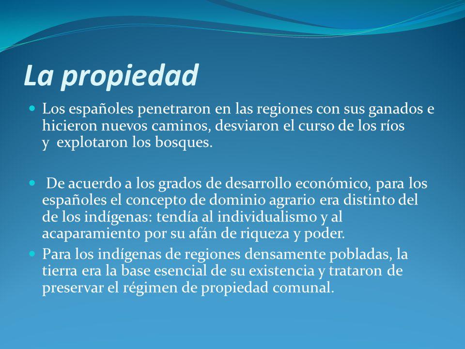 La propiedad Los españoles penetraron en las regiones con sus ganados e hicieron nuevos caminos, desviaron el curso de los ríos y explotaron los bosques.