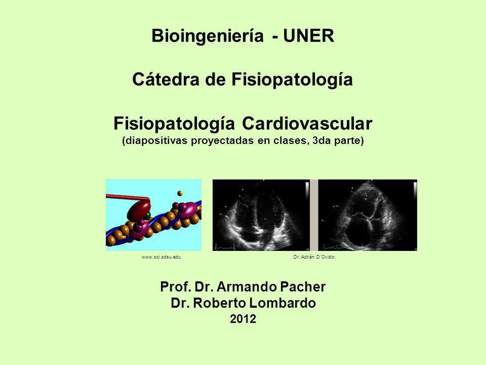 Bioingeniería - UNER Cátedra de Fisiopatología Fisiopatología Cardiovascular (diapositivas proyectadas en clases, 3da parte) Prof. Dr. Armando Pacher