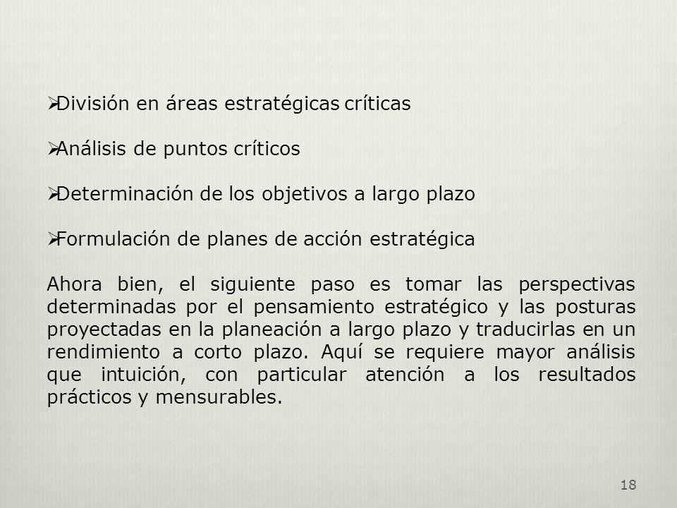 18 División en áreas estratégicas críticas Análisis de puntos críticos Determinación de los objetivos a largo plazo Formulación de planes de acción es