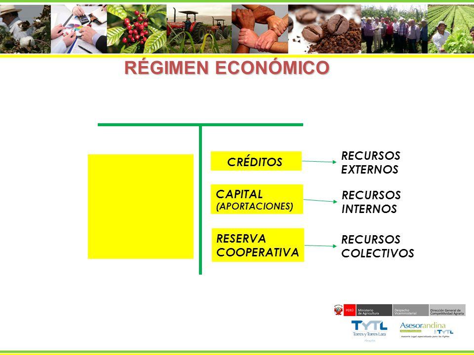 RECURSOS INTERNOS RECURSOS COLECTIVOS RECURSOS EXTERNOS APORTACIONES- CAPITAL INTERESES Y EXCEDENTES CAPITALIZADOS RESERVA COOPERATIVA RECURSOS DE TERCERAS PERSONAS