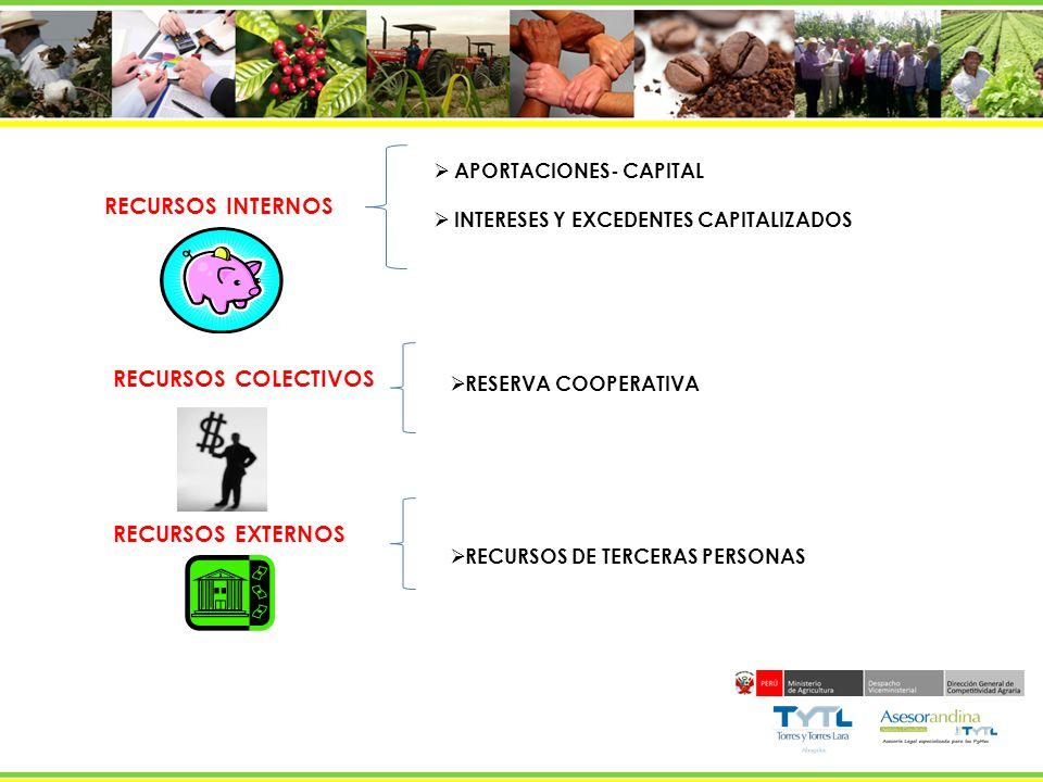 RECURSOS INTERNOS RECURSOS COLECTIVOS RECURSOS EXTERNOS APORTACIONES- CAPITAL INTERESES Y EXCEDENTES CAPITALIZADOS RESERVA COOPERATIVA RECURSOS DE TER