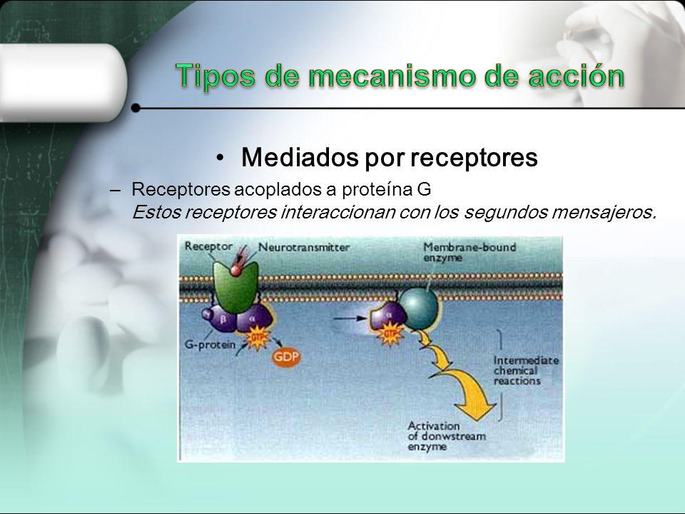 Mediados por receptores – Receptores acoplados a proteína G Estos receptores interaccionan con los segundos mensajeros.
