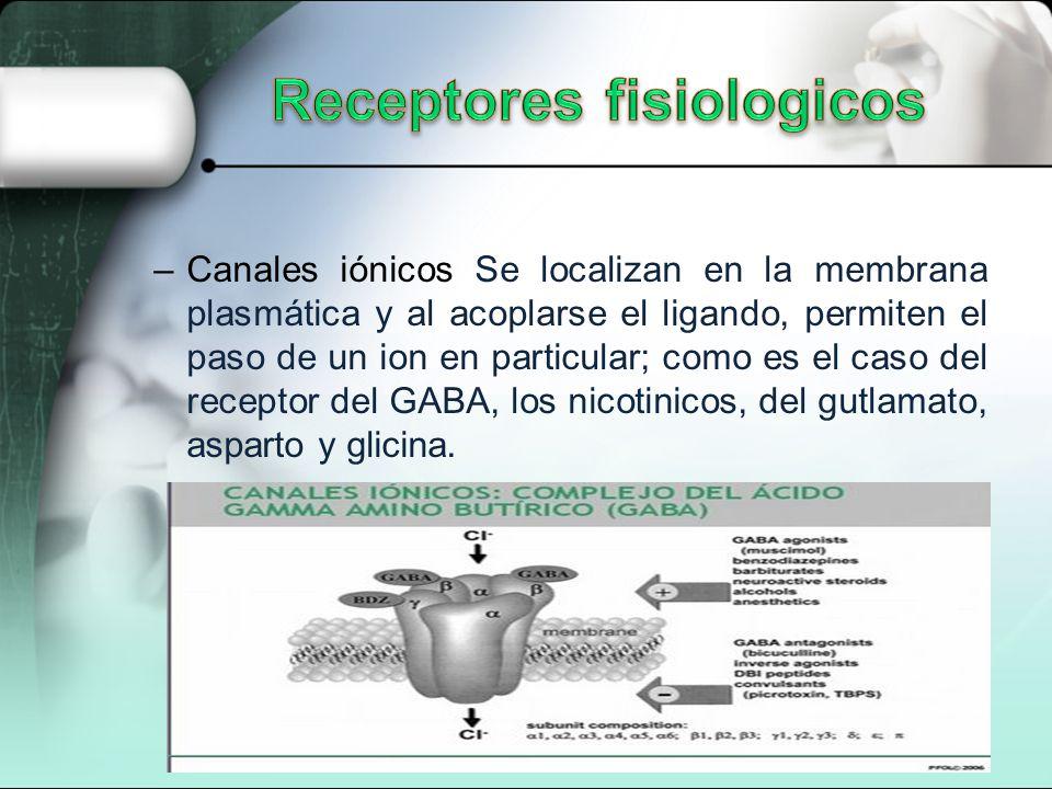 –Canales iónicos Se localizan en la membrana plasmática y al acoplarse el ligando, permiten el paso de un ion en particular; como es el caso del receptor del GABA, los nicotinicos, del gutlamato, asparto y glicina.