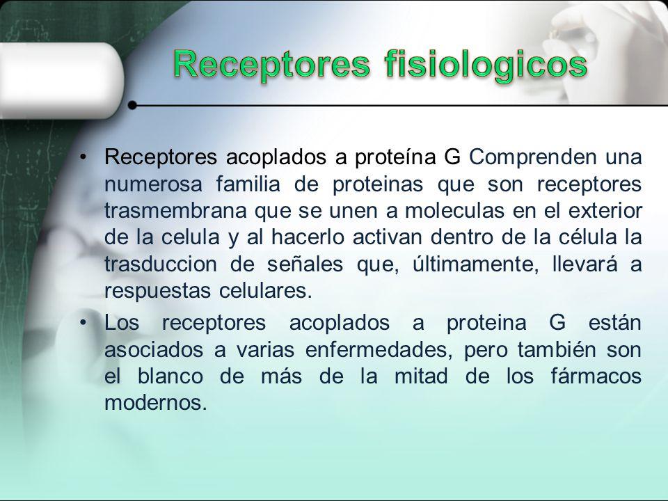 Receptores acoplados a proteína G Comprenden una numerosa familia de proteinas que son receptores trasmembrana que se unen a moleculas en el exterior de la celula y al hacerlo activan dentro de la célula la trasduccion de señales que, últimamente, llevará a respuestas celulares.