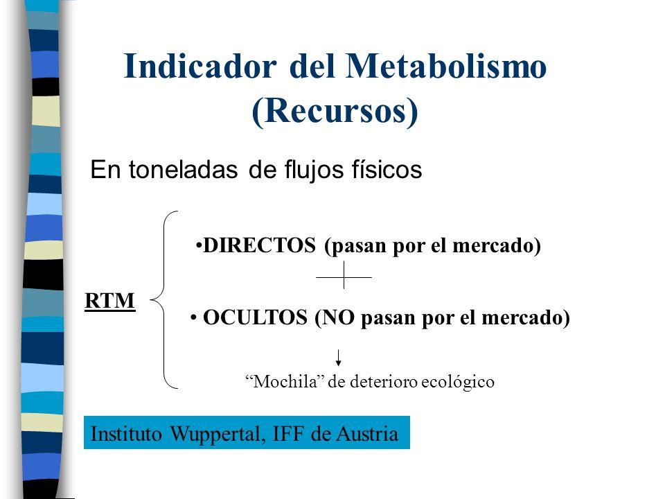 Indicador del Metabolismo (Recursos) En toneladas de flujos físicos RTM DIRECTOS (pasan por el mercado) OCULTOS (NO pasan por el mercado) Mochila de d