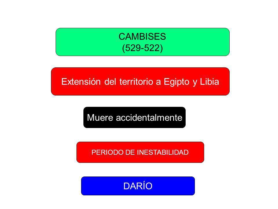 DARÍO I (522-485) REY DE REYES 3,000,000 Km Organiza el territorio en Satrapías