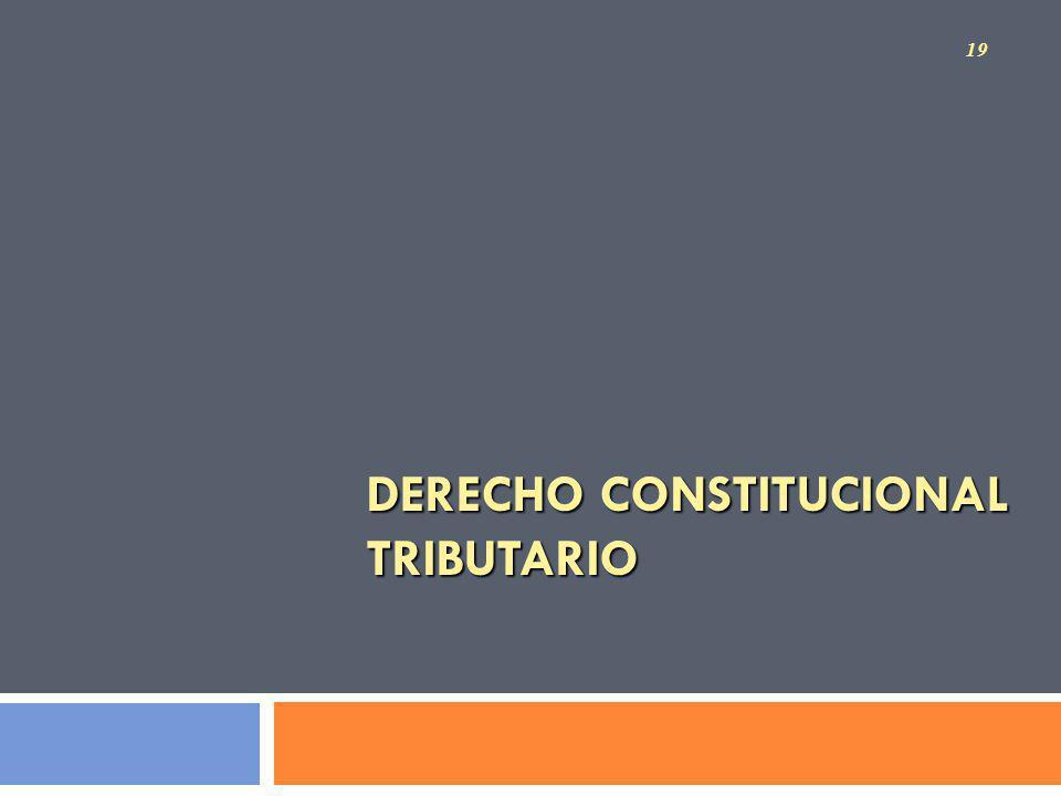 DERECHO CONSTITUCIONAL TRIBUTARIO 19