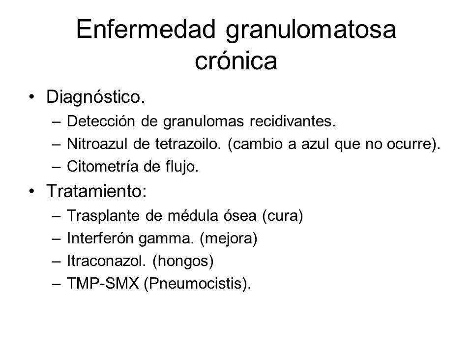 Diagnóstico. –Detección de granulomas recidivantes. –Nitroazul de tetrazoilo. (cambio a azul que no ocurre). –Citometría de flujo. Tratamiento: –Trasp
