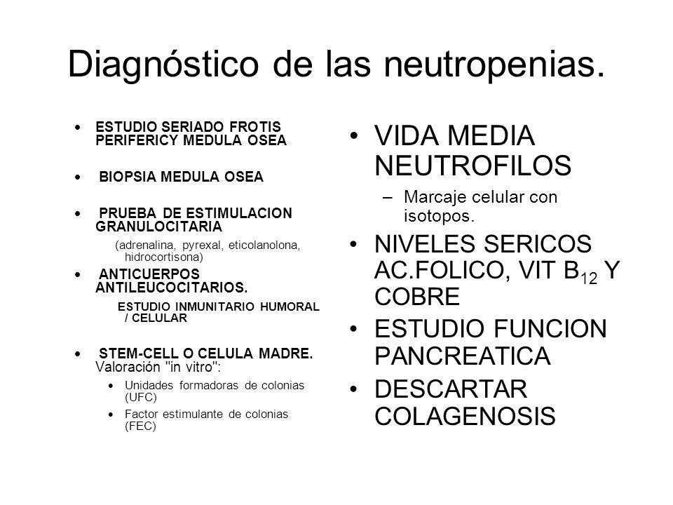 Diagnóstico de las neutropenias. ESTUDIO SERIADO FROTIS PERIFERICY MEDULA OSEA BIOPSIA MEDULA OSEA PRUEBA DE ESTIMULACION GRANULOCITARIA (adrenalina,