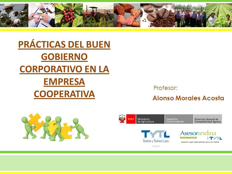 Alonso Morales Acosta Profesor: PRÁCTICAS DEL BUEN GOBIERNO CORPORATIVO EN LA EMPRESA COOPERATIVA