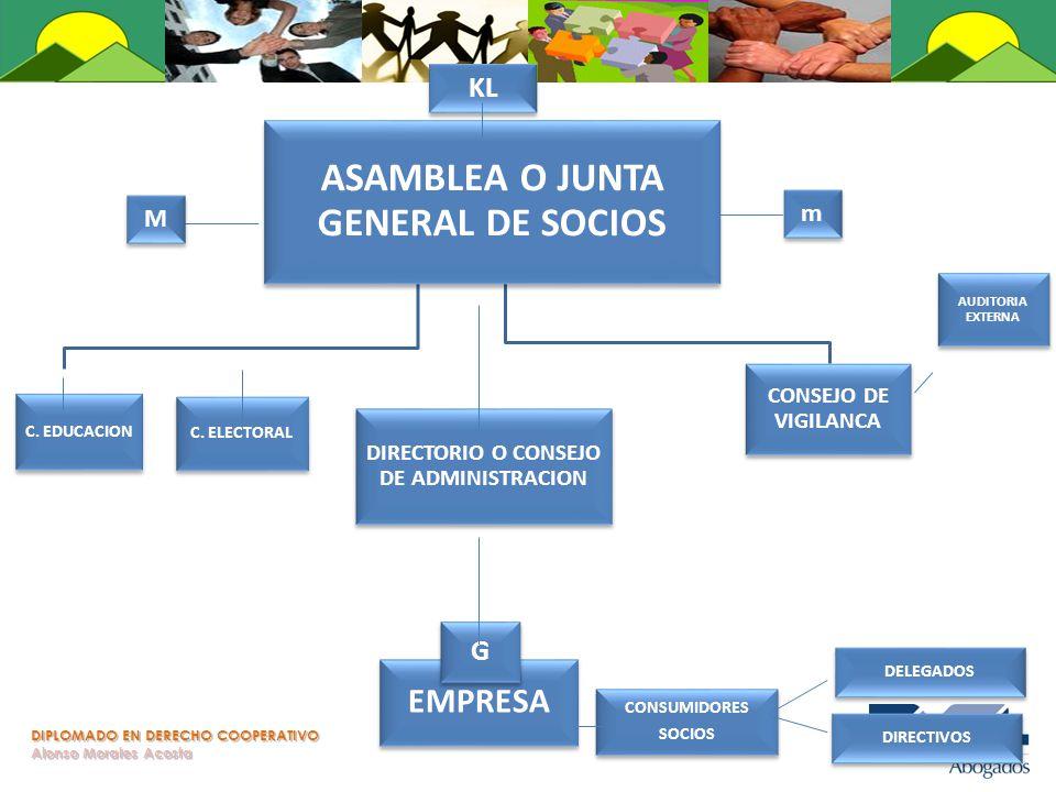 DIPLOMADO EN DERECHO COOPERATIVO Alonso Morales Acosta ASAMBLEA O JUNTA GENERAL DE SOCIOS C. ELECTORAL DIRECTORIO O CONSEJO DE ADMINISTRACION CONSEJO