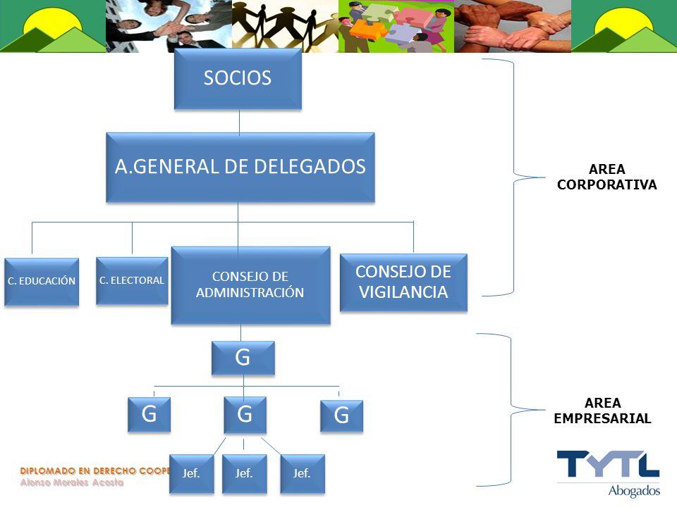DIPLOMADO EN DERECHO COOPERATIVO Alonso Morales Acosta A.GENERAL DE DELEGADOS C. EDUCACIÓN C. ELECTORAL CONSEJO DE VIGILANCIA SOCIOS CONSEJO DE ADMINI