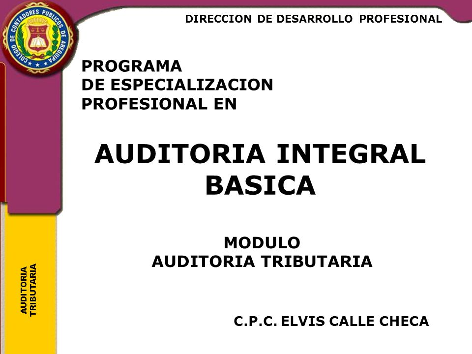 AUDITORIA TRIBUTARIA PROGRAMA DE ESPECIALIZACION PROFESIONAL EN C.P.C. ELVIS CALLE CHECA AUDITORIA INTEGRAL BASICA MODULO AUDITORIA TRIBUTARIA DIRECCI