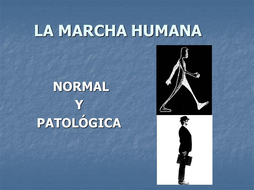 LA MARCHA HUMANA NORMAL NORMALYPATOLÓGICA