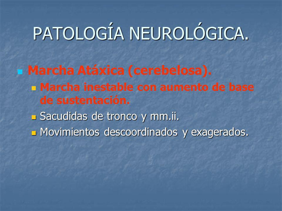 PATOLOGÍA NEUROLÓGICA.Marcha Atáxica (cerebelosa).