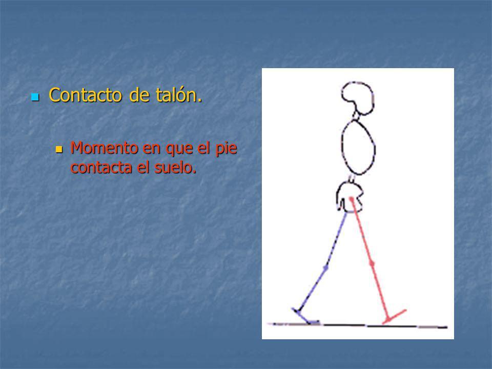 DEBILIDAD MUSCULAR LOCALIZADA Debilidad de dorsiflexores de tobillo Debilidad de dorsiflexores de tobillo (Tibial Anterior).