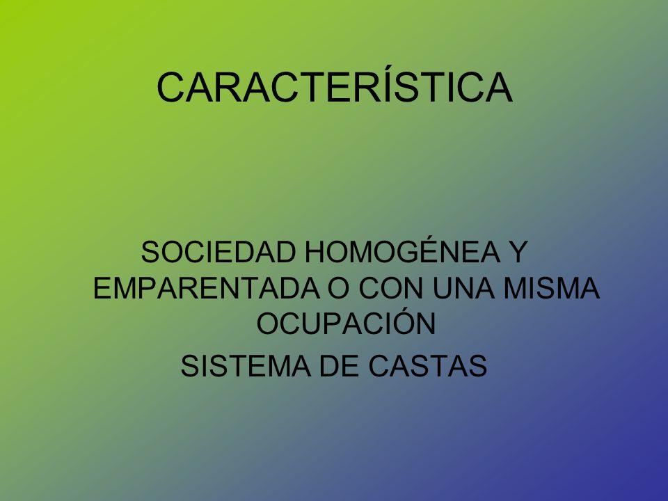 CARACTERÍSTICA SOCIEDAD HOMOGÉNEA Y EMPARENTADA O CON UNA MISMA OCUPACIÓN SISTEMA DE CASTAS