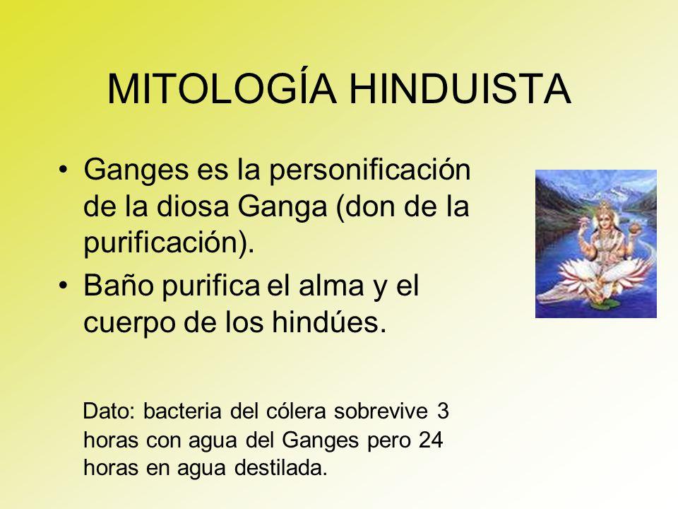 MITOLOGÍA HINDUISTA Ganges es la personificación de la diosa Ganga (don de la purificación). Baño purifica el alma y el cuerpo de los hindúes. Dato: b